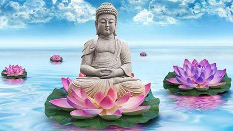 Bouddha et nenuphars