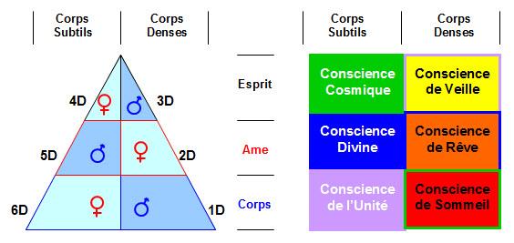 Conscience 3