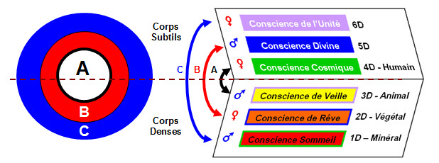 Conscience 4