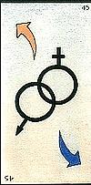 Oracle ge 15 les symboles sexuels