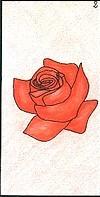 Oracle ge 2 la rose